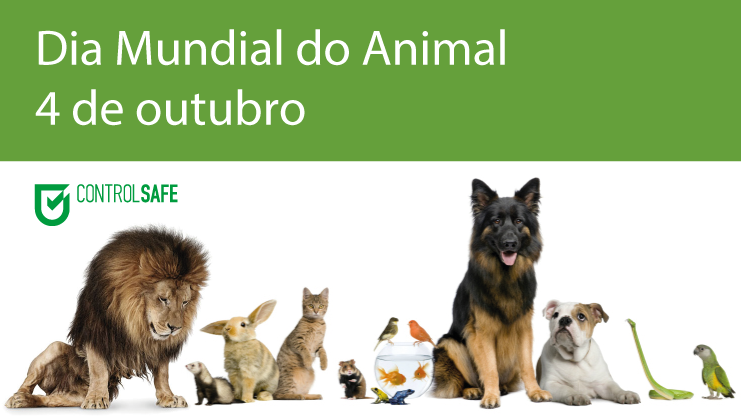 dia-mundial-animal-4-outubro